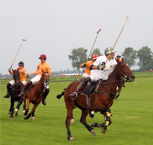 Polowedstrijd1